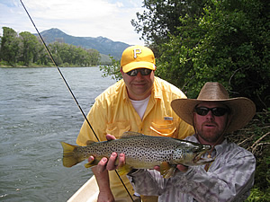 Brown Trout caught on Salmon dry fly - Snake River - Wyoming July 2009